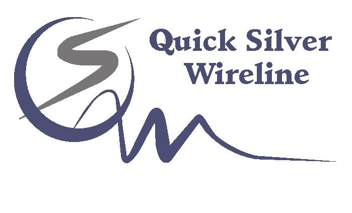 Quick Silver  logo.jpg (47 KB)